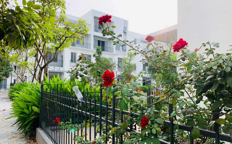 Bán biệt thự 160m2 khu đô thị The Manor Central Park mặt vườn hoa