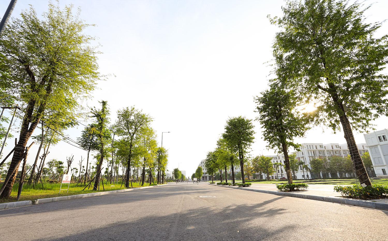 Đường 20m gần công viên trung Tâm The Manor Central Park