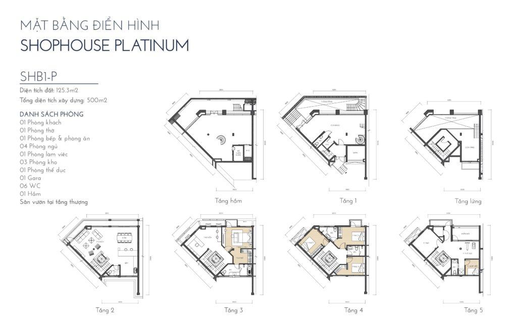 Mặt bằng điển hình Shophouse Platinum SHBD1-P The Manor Central Park